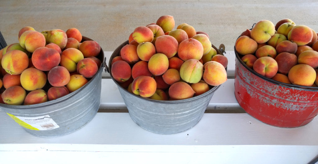Buckets of U-Pick Peaches at Gregg Farms