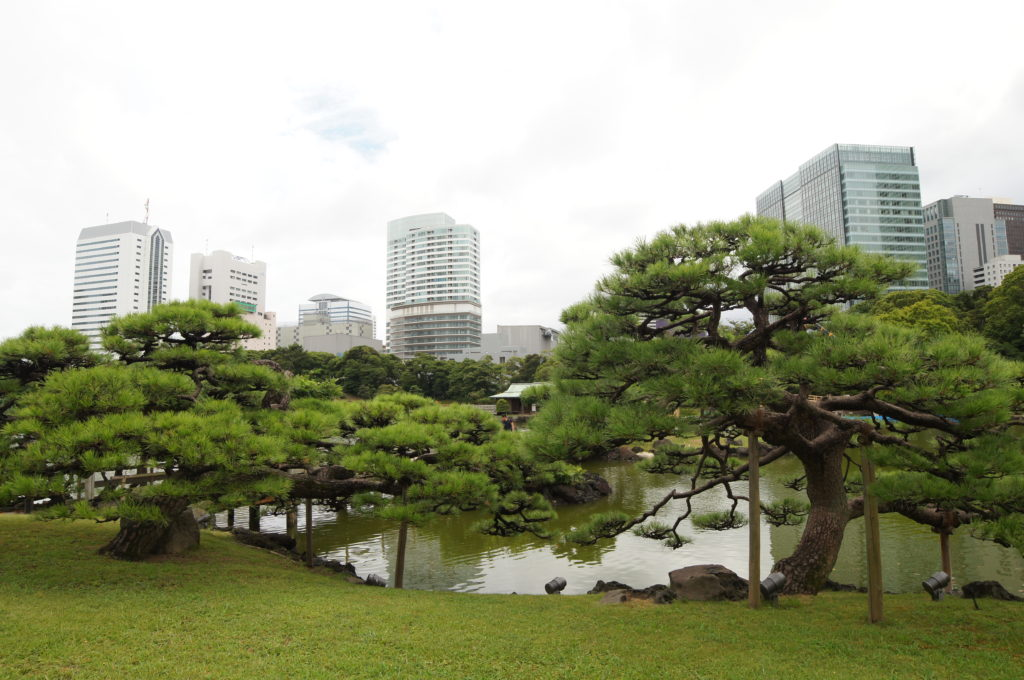Hama-Rikyu Gardens - Where the Past and Present Collide